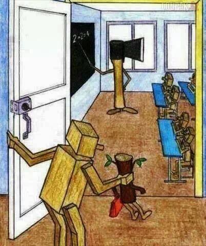 Din monstruozitatile Ministerului Educatiei