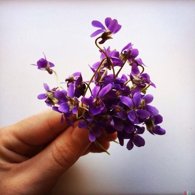 Violete pentru fete